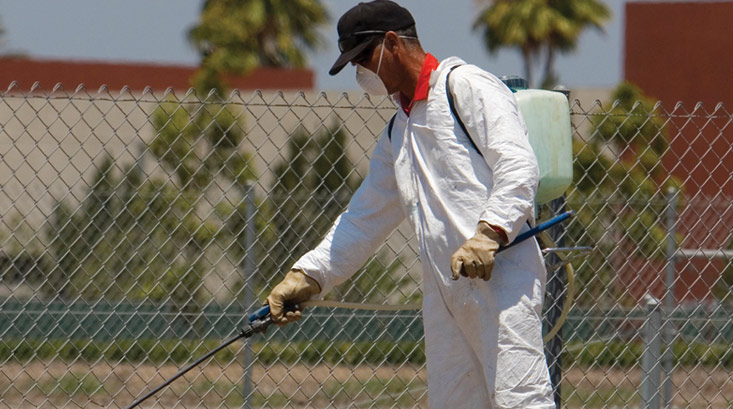 pest control important